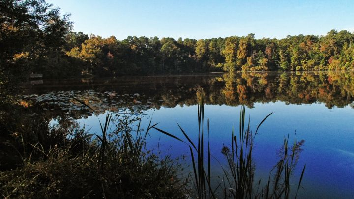 Idyllic View Of Tree Reflections On Water Against Sky At Historic Yates Mill County Park